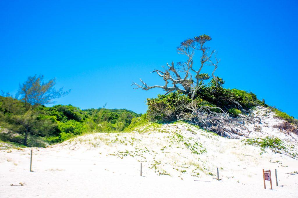 Arraial do Cabo. Caribe Brasileiro